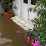 FloodSaxInUse